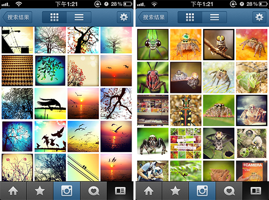instagram-有趣用户-鸟哥-虫爷
