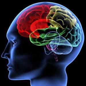 脑部扫描技术